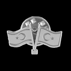 Gümüş Rozet